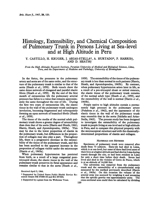 Histology Extensibility And Chemical Composition Of Pulmonary