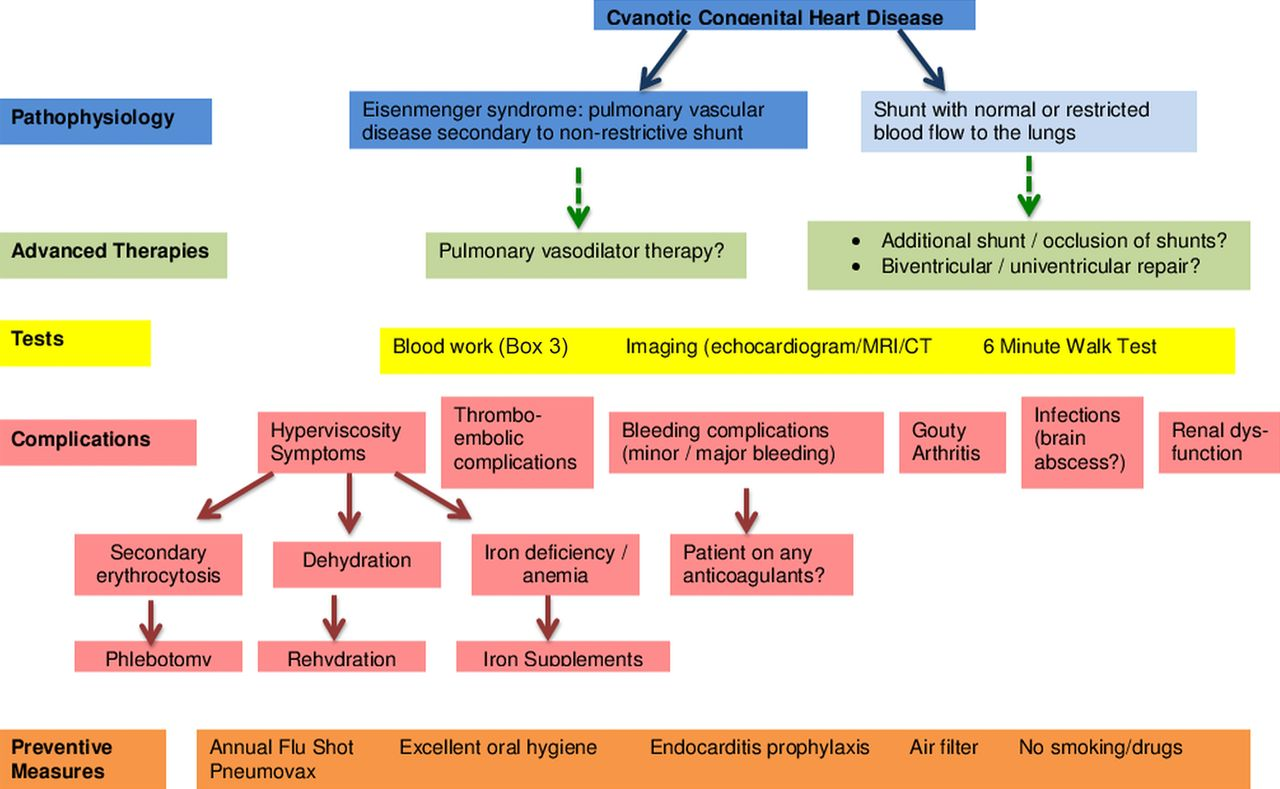 Management Of Adults With Cyanotic Congenital Heart