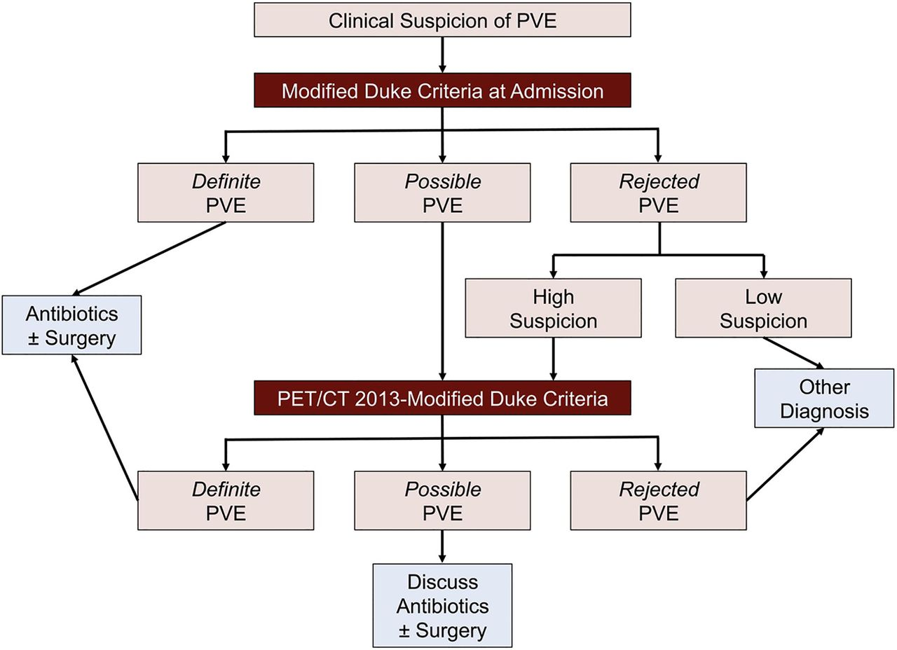 New diagnostic approaches in infective endocarditis | Heart