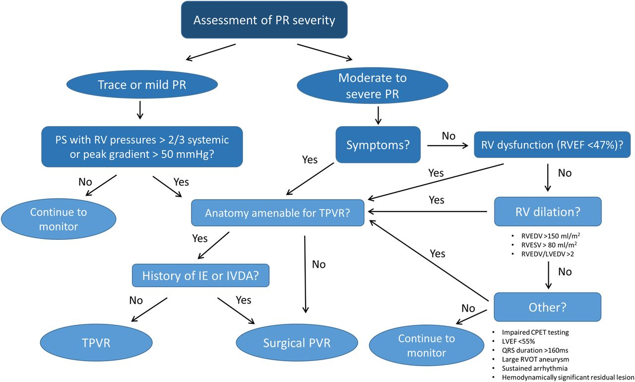 Approach to residual pulmonary valve dysfunction in adults with ...