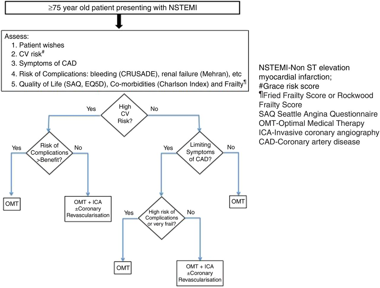 Coronary revascularisation in older patients with non-ST elevation ...