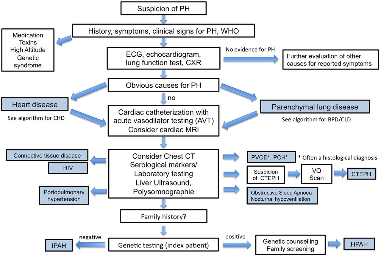 Hypertension syndrome in children 13