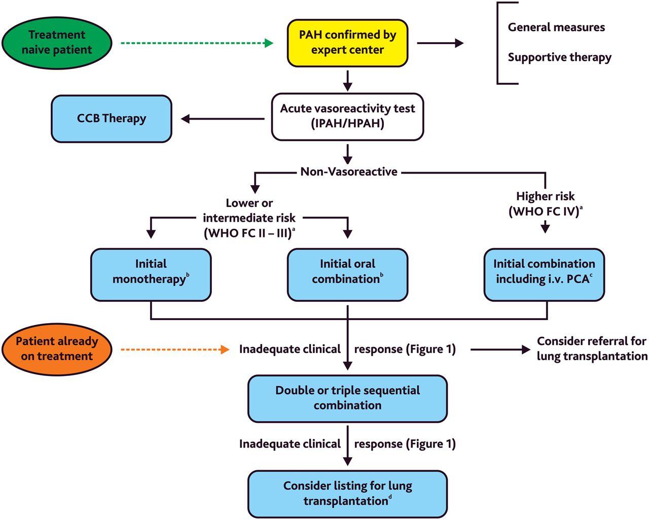 Treatment Of Children With Pulmonary Hypertension Expert