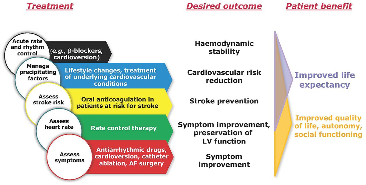 Integrated Care Of Patients With Atrial Fibrillation The 2016 Esc