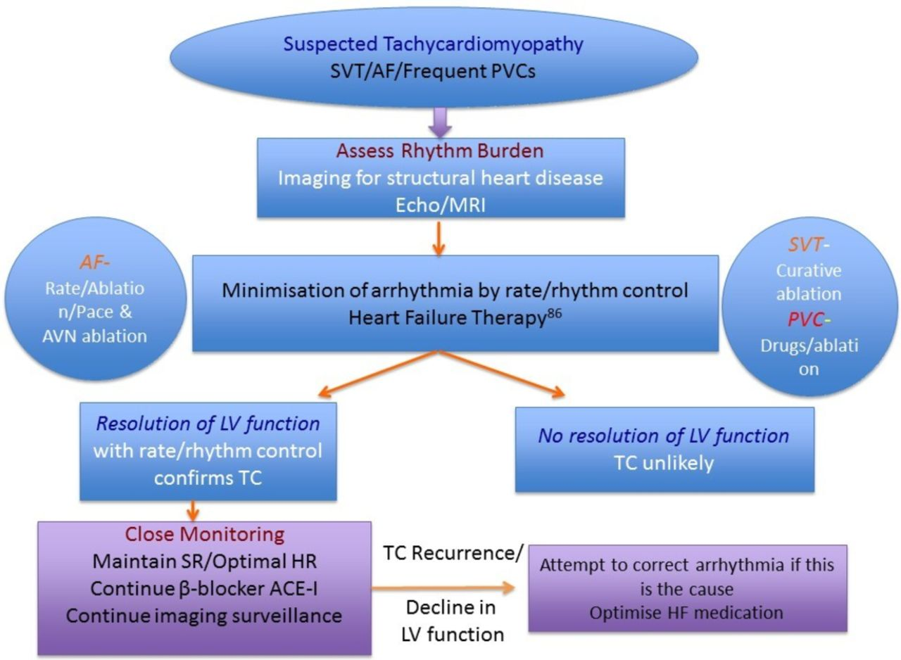 Pathophysiology, diagnosis and treatment of