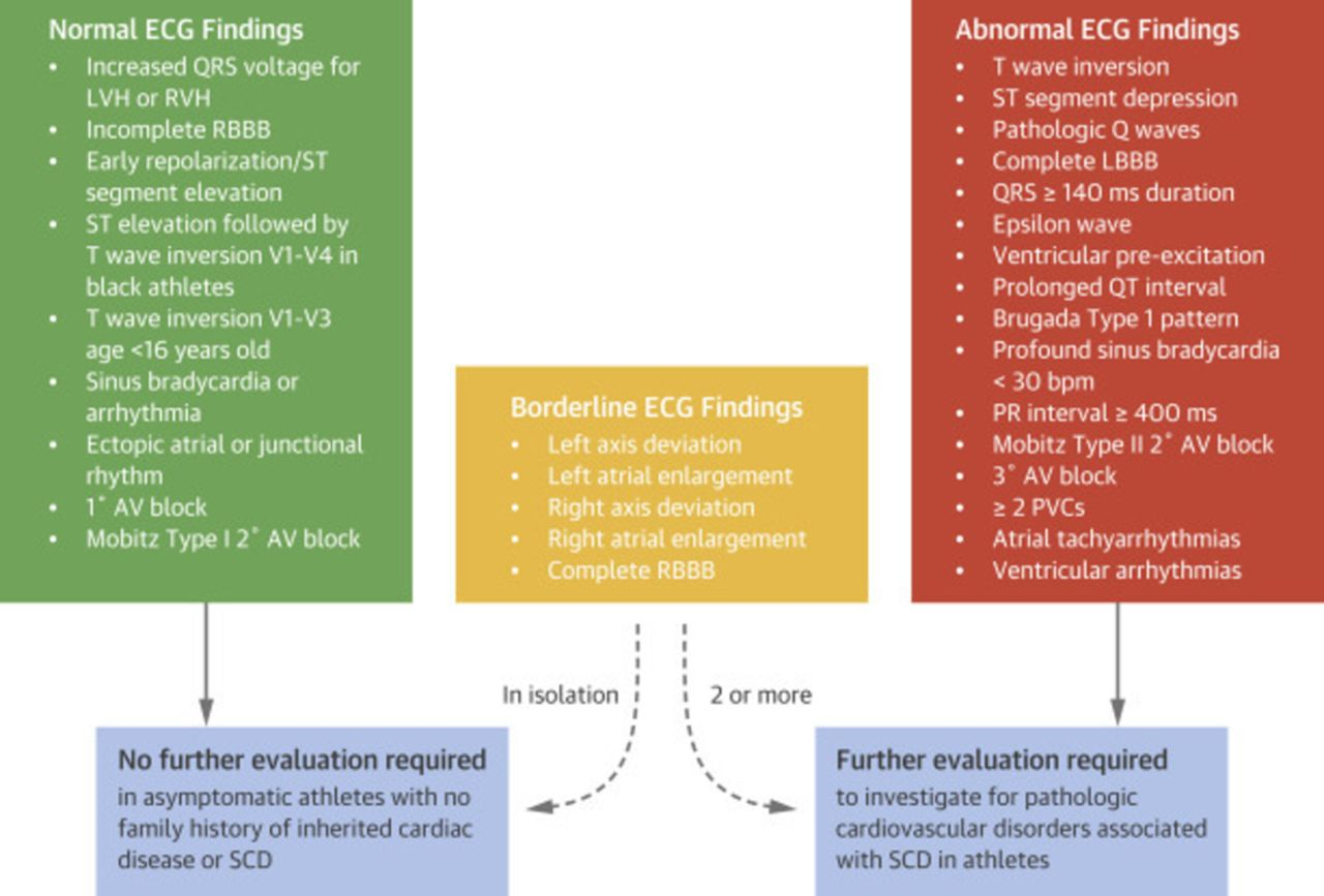 ECG screening in athletes: differing views from two sides of