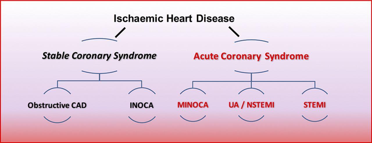 Stable coronary syndromes: pathophysiology, diagnostic advances and ...