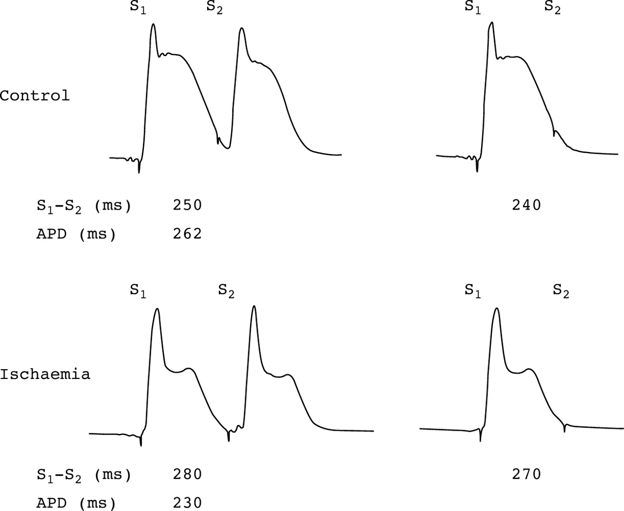 10 what was the effect of curare on eliciting an action potential When an action potential reaches the pre  or curare was isolated from the sap of an amazonian vine after the  the effect of neuromuscular blockade on.