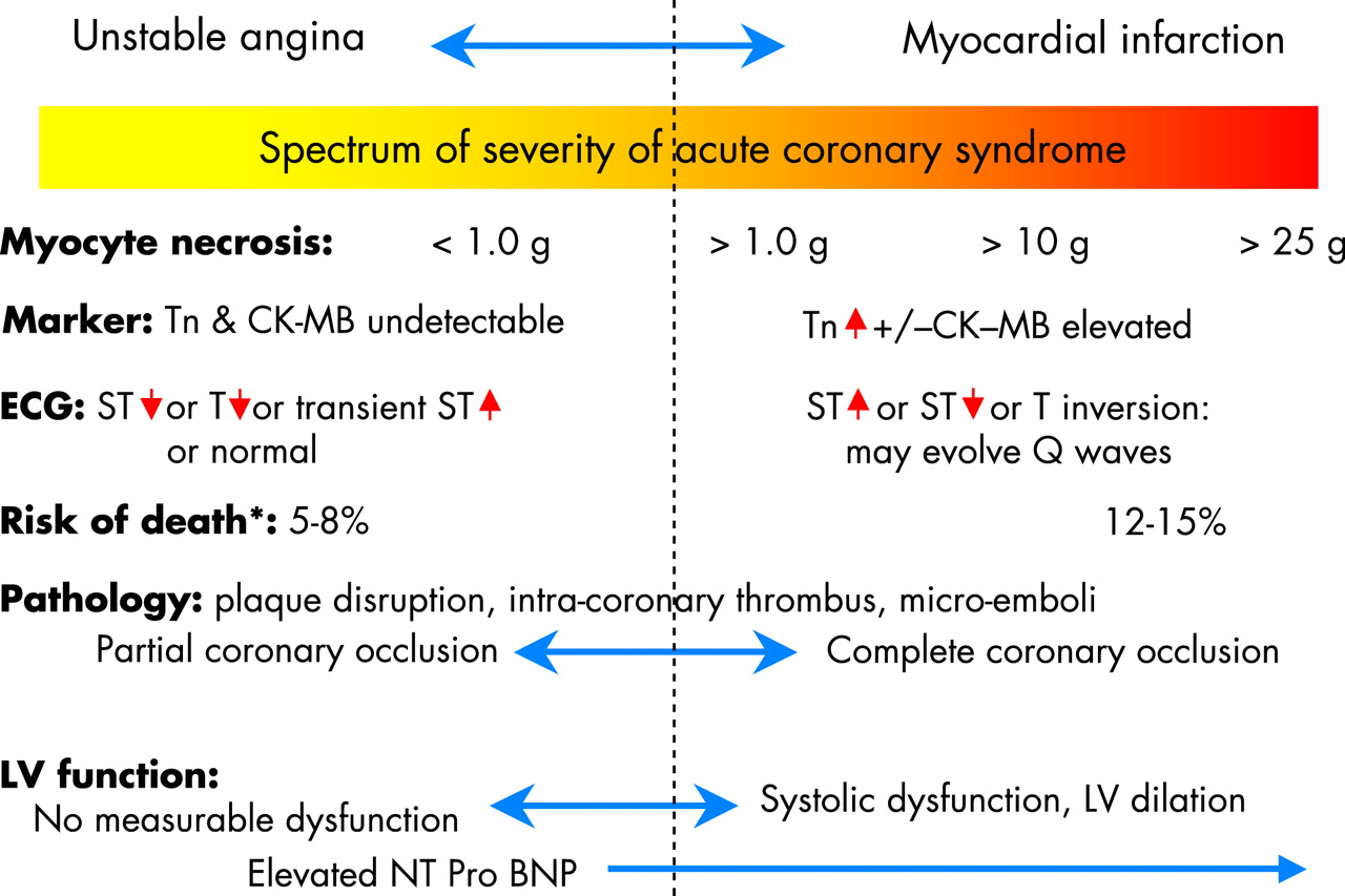 management of acute coronary syndromes: an update | heart