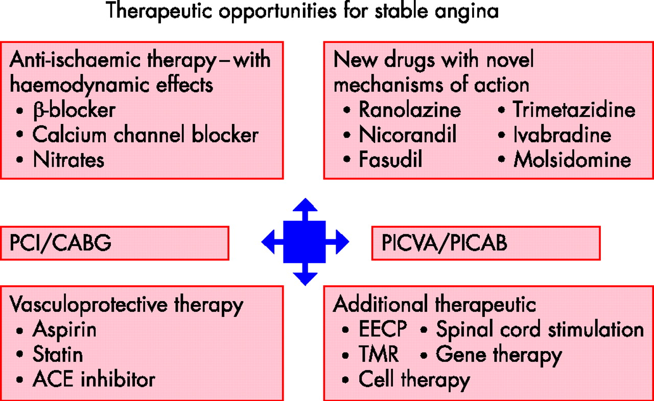 Treatment Of Stable Angina Heart