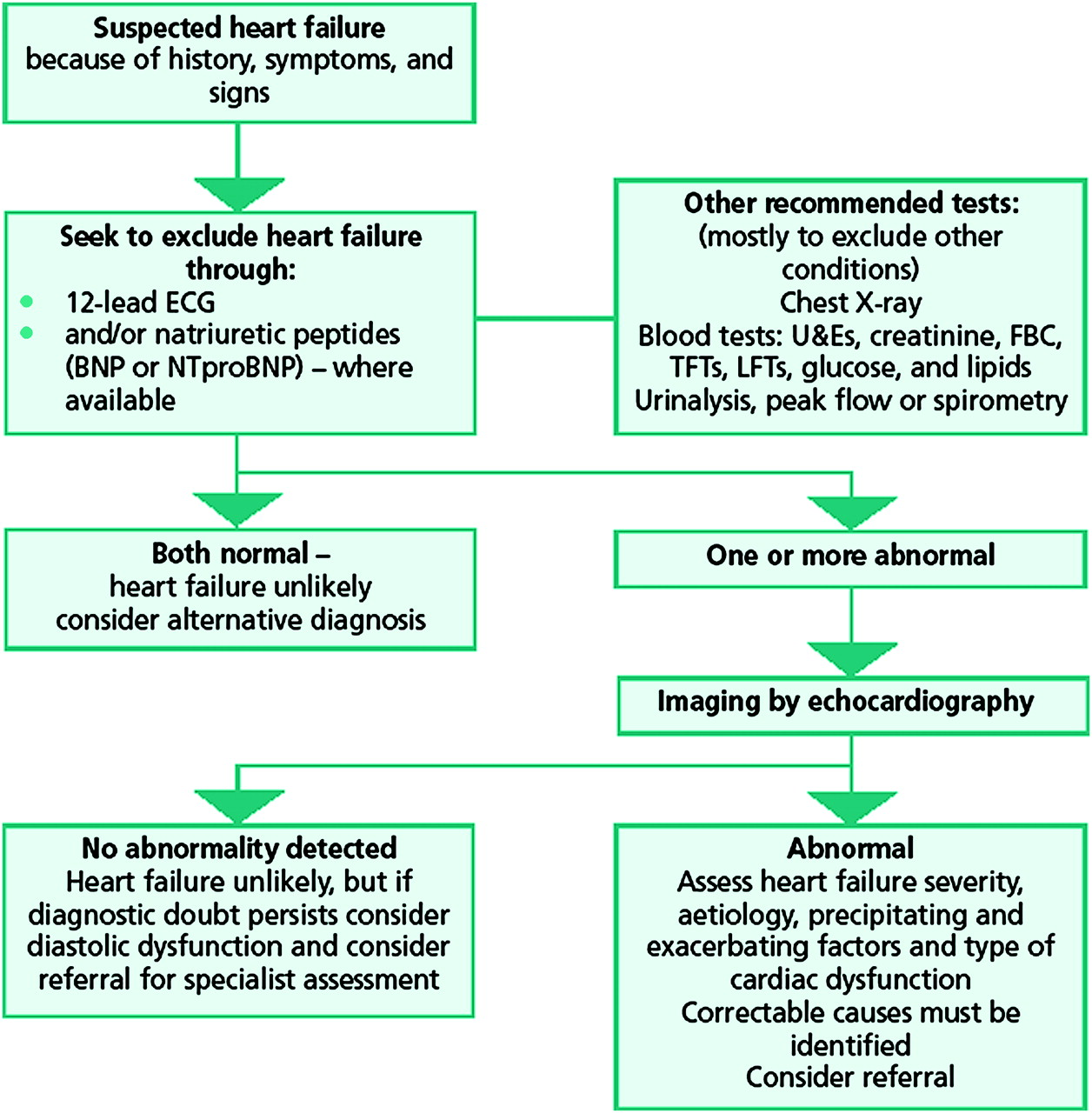 Diagnosis of heart failure in primary care | Heart