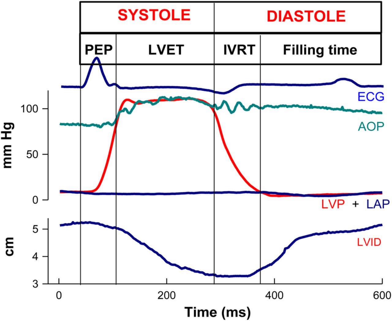 Echo doppler assessment of diastole flow function and download figure pooptronica