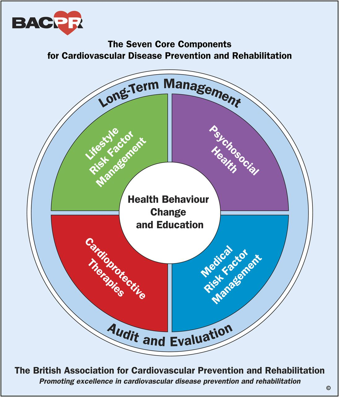 Bacpr scientific statement british standards and core components download figure ccuart Choice Image