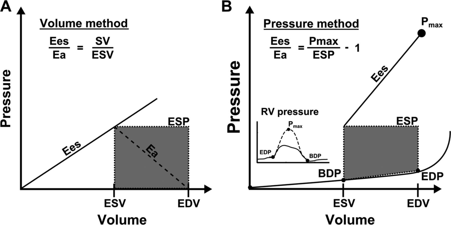 Rv Pulmonary Arterial Coupling Predicts Outcome In Patients Referred Cycle Electric Generator Wiring Diagram Furthermore 50 To 30 Download Figure