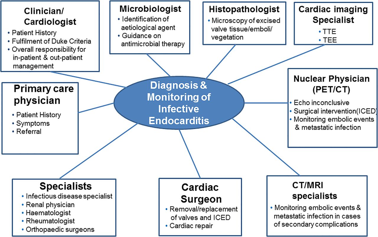 New Diagnostic Approaches In Infective Endocarditis