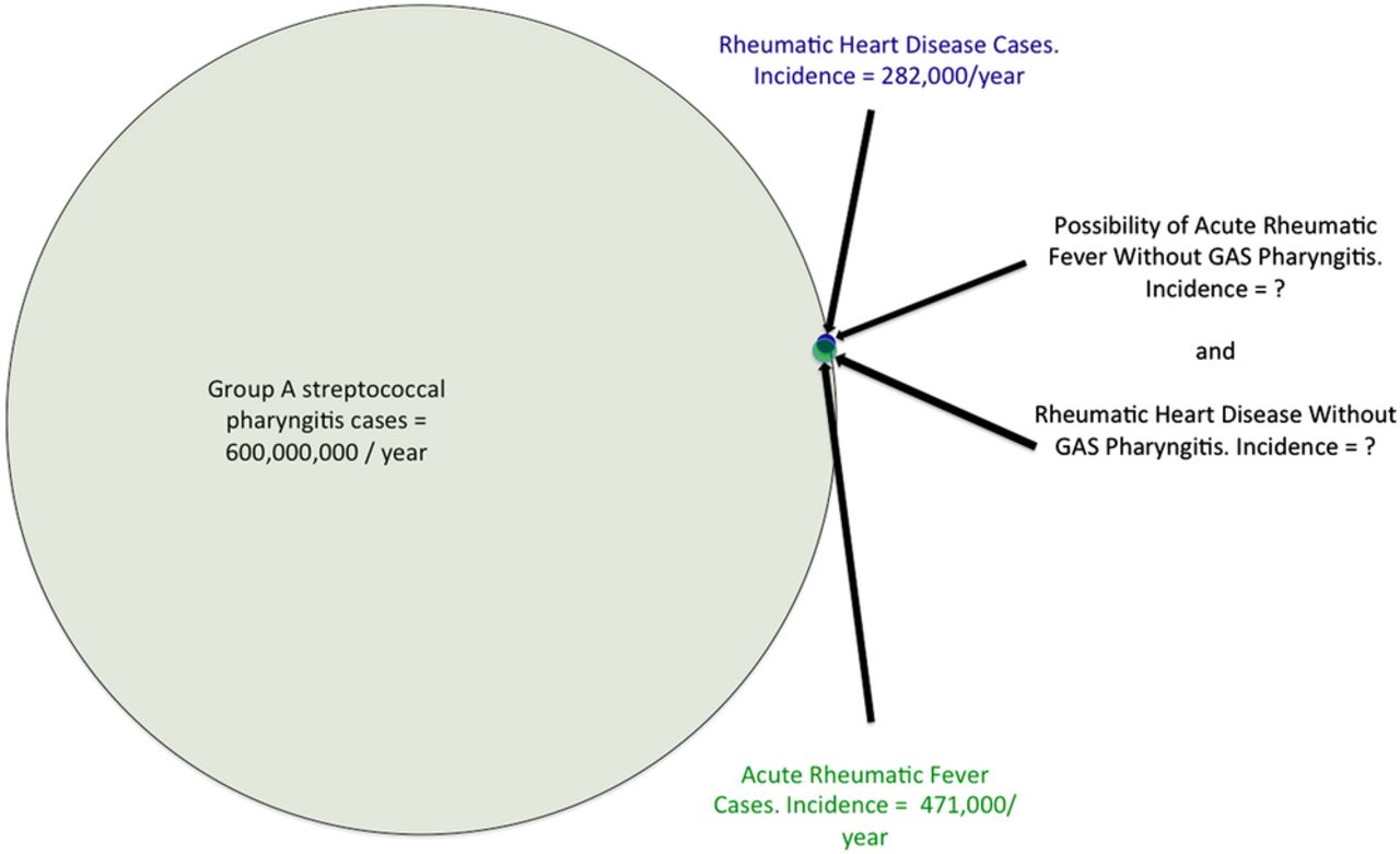An immunological perspective on rheumatic heart disease download figure open in new tab download powerpoint figure 1 venn diagram pooptronica Gallery