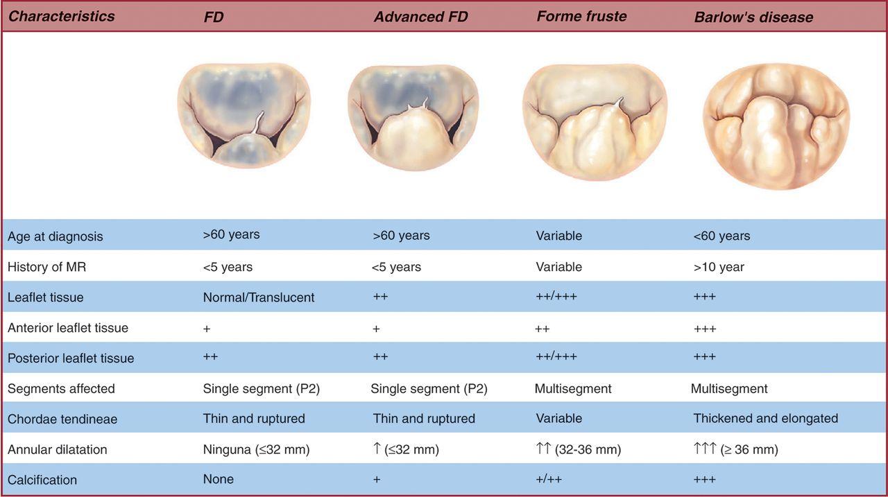 view British Journal of Radiology