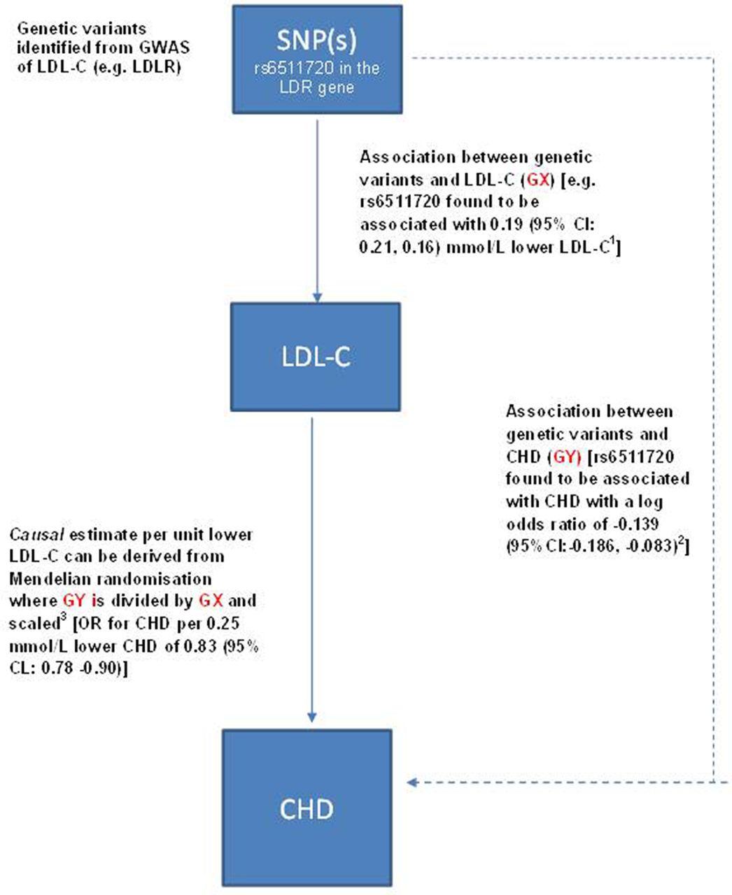 Mendelian randomisation in cardiovascular research: an