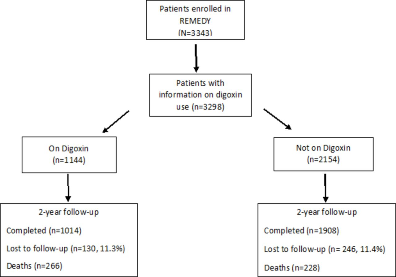 Digoxin and clinical outcomes in the global rheumatic heart disease download figure ccuart Images